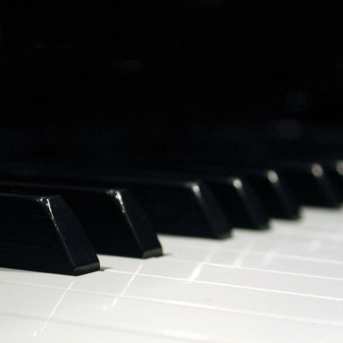 1266923746___pianocover2.jpg